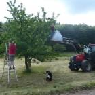 bnb_louise_landwirtschaft