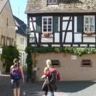 charmantes_deidesheim_ferienwohnungen_pfalz
