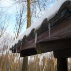 ferienwohnungen_pfalz_winterwald - Winter im Pfaelzerwald